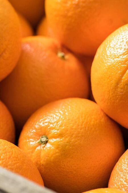 نکته هایی برای نگهداری از پرتقال,اصول نگهداری از پرتقال,شیوه های نگهداری از پرتقال