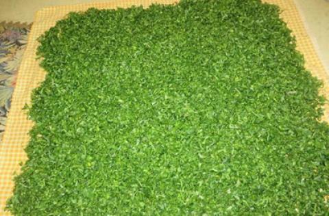 نکاتی برای خشک کردن سبزیجات