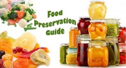 14 مواد غذایی که ما نادرست نگهداری می کنیم؟
