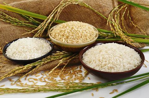 راههای تشخیص برنج ایرانی اصل روشهای تشخیص برنج ایرانی اصل از تقلبی