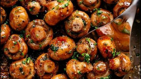طرز تهیه 13 نوع غذای لذیذ و خوشمزه با قارچ آموزش انواع غذا با قارچ
