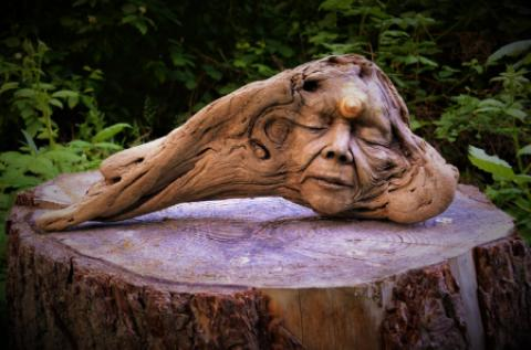 یک هنرمند کانادایی مجسمه های زیبایی را با تخته پاره های روی آب ساخته