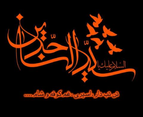 مداحی شهادت امام زین العابدین علیه السلام
