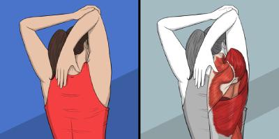 رفع خستگی این تمرینات کششی, تمرینات کششی برای گردن