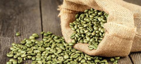 خواص قهوه سبز و تاثیر آن برای لاغری