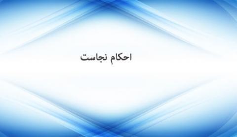از نظر اسلام چه چیزهایی نجس هستند؟