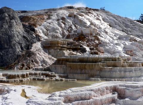 سنگ تراورتن چیست؟ انواع سنگ های تراورتن همه چیز درباره سنگ تراورتن