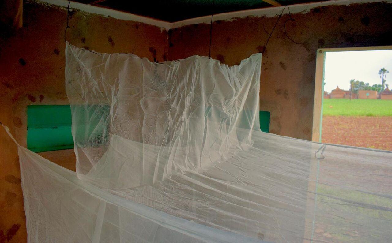 طراحی پشهبند جدید برای مقابله با پشههای مقاوم به حشرهکش
