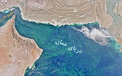 بزرگترین منطقه مرده دریایی کشف شد