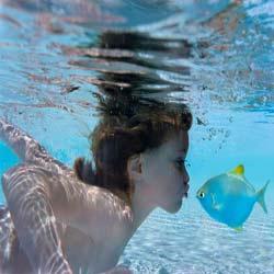 اطلاعاتی درمورد شنا