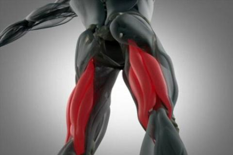 تمریناتی برای تقویت عضلات همسترینگ همراه با عکس  تقویت عضلات همسترینگ با ورزش