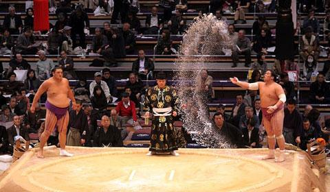 ورزش رزمی سومو