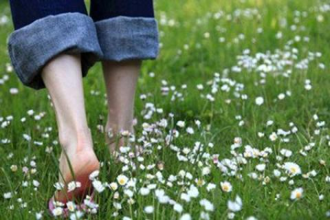 پیادهروی روی چمن با پای برهنه چه فوایدی دارد؟