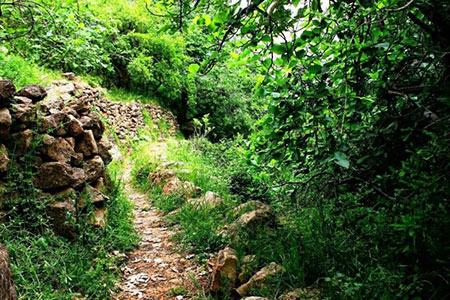 مناطق دیدنی آلاشت,روستای آلاشت,روستای آلاشت در مازندرا
