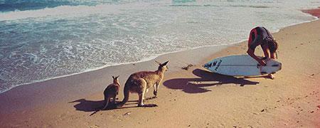 تور استرالیا,رزرو تور استرالیا,خرید تور استرالیا