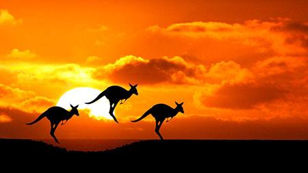 تور استرالیا,خرید تور استرالیا,سفر به استرالیا