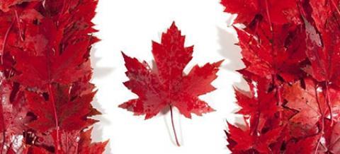 سریعترین راه حل مهاجرت تحصیلی کانادا ۲۰۱۹