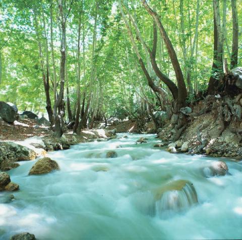 تنگ گنجهای، چشم انداز بینظیری از شاهکار طبیعت
