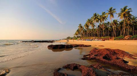 تور گوا، سفری خاطره انگیز به بهشت هندی