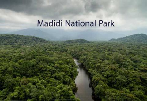 پارک ملی مادیدی، پارکی که میتواند انسان را فلج کند! پارک ملی مادیدی در کشور بولیوی